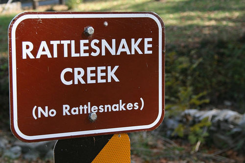 Rattlesnake Creek - photo by zoom in tight